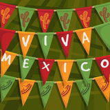 Mexican bunting Royalty Free Stock Photography