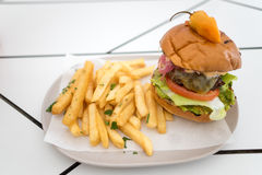 Mexican Burger With French Fries royalty free stock images
