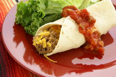 Mexican Burrito royalty free stock photos