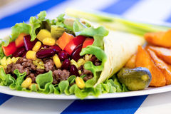 Mexican burrito with minced beef meat Stock Image