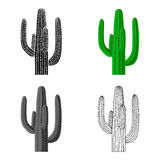 Mexican cactus icon in cartoon style isolated on white background. Mexico country symbol stock vector illustration. Stock Photography