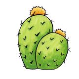 Mexican Edible Cactus or Cacti for Cinco De Mayo. Mexican Cactus with Spines or Thorns and Flowers as Isolated Clipart for Cinco De Mayo Holiday or Celebration