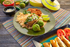 Mexican carnitas tacos with salsa and Mexico food. Ingredients royalty free stock photography