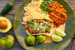 Mexican carnitas tacos with salsa. And Mexico food ingredients stock photo