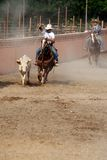 Mexican charros cowboy lassoing a bull, TX, US Royalty Free Stock Photography