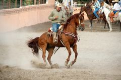 Mexican charros horseman on prancing horse, TX, US Royalty Free Stock Photo