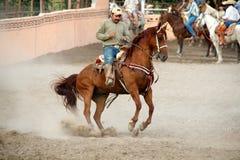 Mexican charros horseman on prancing horse, TX, US Royalty Free Stock Photo