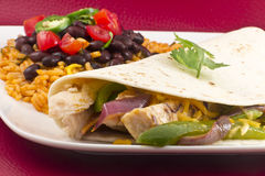 Mexican Chicken Fajita Stock Photography