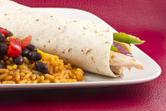 Mexican Chicken Fajita Stock Photo