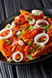 Mexican chilaquiles with chicken closeup on a plate. vertical Stock Photo