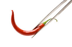 Mexican chilli pepper Stock Photos