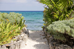 Mexican coast Royalty Free Stock Images