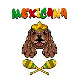 Mexican Cocker Spaniel Dog. Sombrero, Meracas, Mustache. Mexico. Mexican symbols. Dog breed. Vector. Mexican Cocker Spaniel Dog. Sombrero, Meracas, Mustache Stock Image
