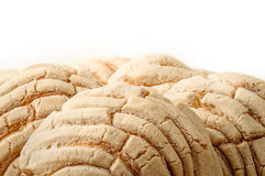 Mexican Conchas sweet bread Royalty Free Stock Photography