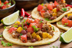 Mexican cuisine - tortillas with chili con carne, tomato salsa Royalty Free Stock Images