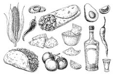 Free Mexican Cuisines Drawing. Traditional Food And Drink Vector Stock Image - 107138651