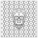 Mexican Day Of The Dead Skull. Stock Image