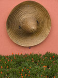 Mexican detail. Concept, straw Mexican hat sombrero hanging on the pink colored wall, underneath desert flowers waiting to bloom Stock Photos
