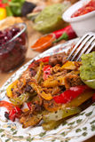 Mexican dish. With chicken, beef and vegetables Royalty Free Stock Photography
