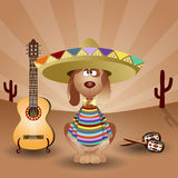 Mexican dog with guitar and maraca Stock Photo