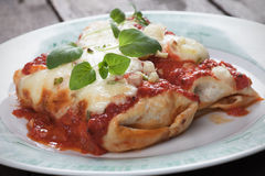 Mexican enchilada. Dish with tortillas, hot chili sauce, ground beef and melted cheese Stock Image