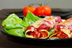 Mexican enchiladas. Mexican style enchiladas on the plate with lettuce Stock Image