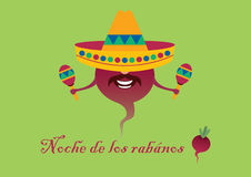 Mexican feast - Noche de los rabanos. Mexican feast with carved radish - Oaxaca. Mexican background in party style. Vector illustration. Festive card. Festive Royalty Free Stock Image
