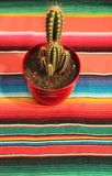 Mexican fiesta poncho rug with cactus Stock Images