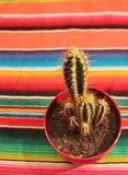 Mexican fiesta poncho rug with cactus Stock Photo