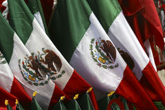 Mexican Flag. Independence day september 16: three equal vertical bands of green (hoist side), white, and red; the coat of arms (an eagle perched on a cactus Royalty Free Stock Images