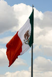 Mexican flag 4. Green, white and red Mexican flag waving royalty free stock images