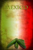 Mexican flag with jalapeno. Tipycal Mexican food: green jalapeno on Mexico flag royalty free stock image