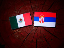 Mexican flag with Serbian flag on a tree stump stock image
