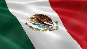 Mexican flag in the wind stock footage