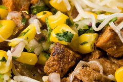 Mexican food. Macro shot of a burrito nice detail corn cheese meat Stock Photos