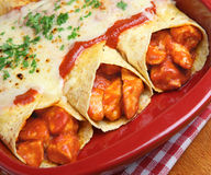 Mexican Food, Chicken Enchiladas Stock Image