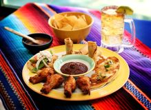 Mexican food 7. A mexican entrees party platter Stock Photography