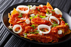 Mexican food fried tortillas with chicken and tomato salsa close Royalty Free Stock Photography