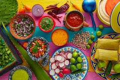 Mexican food mix with sauces nopal and tamale Stock Image