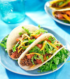 Mexican food - Soft shell tacos Royalty Free Stock Photos