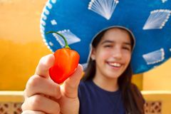 Mexican girl  habanero orange hot chili pepper. Mexican girl show habanero orange hot chili pepper mexican hat Royalty Free Stock Photography