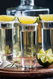 Mexican Gold Tequila Royalty Free Stock Photos