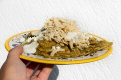 Mexican green chilaquiles with chicken and cheese on white background