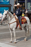 Mexican Horseman Stock Image