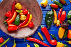 Mexican hot chili peppers colorful mix Royalty Free Stock Image
