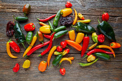 Mexican hot chili peppers colorful mix Royalty Free Stock Photo