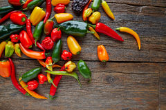 Mexican hot chili peppers colorful mix Royalty Free Stock Photos