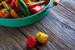 Mexican hot chili peppers colorful mix Stock Photography