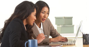 Mexican and Japanese businesswomen working on laptop Stock Photos