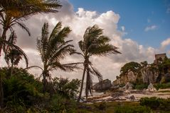 Mexican landscape in cloudy weather by the sea. Tulum, Riviera Maya, Yucatan, Mexico royalty free stock photos